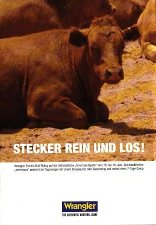 stecker_rein